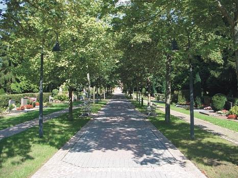Allee auf dem Hauptfriedhof©Universitätsstadt Marburg