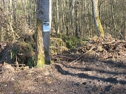 Baum mit Schild vor neuem Biotop im FFHGebiet