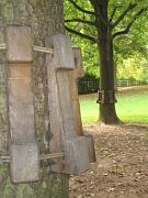 Baumschutzmanschette Slacklining im Nothamptonpark Weidenhausen