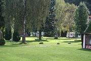 Bäume auf dem Campingplatz Auenland