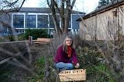 """Christa Stuwe im Marbacher """"Mitmachgarten"""", der als ein """"Nachbarschaftsprojekt im Klimaschutz"""" von der Universitätsstadt Marburg finanziell gefördert wird."""