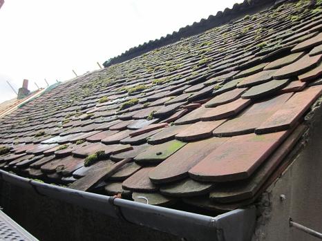 Teilansicht eines Daches. Das Dach ist mit Ziegeln eingedeckt, von den viele brüchig sind oder anstehen. In den Spalten und Nischen könnten Fledermäuse Unterschlupf finden.