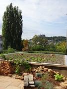 Ein begrüntes Dach in der Universitätsstadt Marburg.