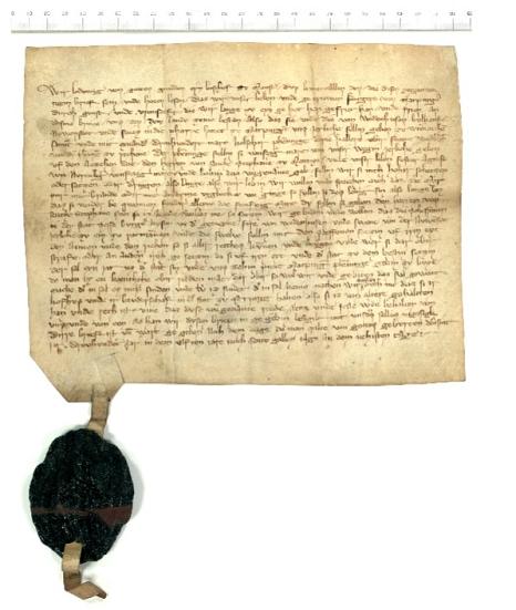 Digitalisat einer Urkunde von 1311 aus dem Stadtarchiv Marburg©Universitätsstadt Marburg