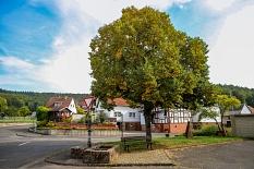 Dorfidylle: Der alte Brunnen unter der großen Linde in Bortshausen.©Thomas Steinforth, Stadt Marburg