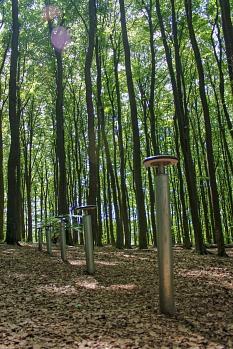 Bockspringen im Sonnenschein je nach Körpergröße und Kraftressourcen ist auf dem Fitnesspfad Richtsberg mit Spaß möglich.©Stefanie Profus, i.A.d. Universitätsstadt Marburg