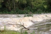 Fluss 4