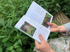 """Jemand hält die aufgeschlagene Broschüre """"Marburg im Wandel"""" in den Händen und liest.©Universitätsstadt Marburg, Jochen Friedrich"""