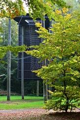 Durch Bäume hindurch erkennt man Teile des Seilgartens des Marburger Abenteuer Projekts (MAP), welches auch im Freizeitgelände angesiedelt ist.©Universitätsstadt Marburg