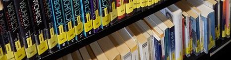 Regalausschnitt mit Büchern aus dem fremdsprachigen Romanbereich©Universitätsstadt Marburg