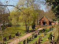 Friedhof Marbach, Zuweg Kapelle im Frühling©Universitätsstadt Marburg FD Stadtgrün Celia Meggers