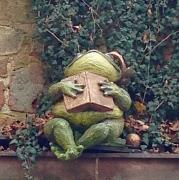 Frosch mit Kugel und Buch