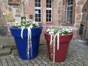 farbige Pflanzgefäße vor dem Rathaus mit bunter Frühjahrsbepflanzung zur Aktion Marburger Frühling