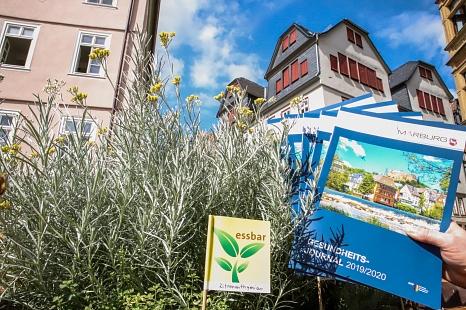 Das Marburger Gesundheitsjournal ist da und kann in allen öffentlichen Gebäuden der Stadt Marburg mitgenommen werden.©Stefanie Profus, Stadt Marburg