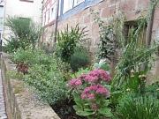 Grünflächenpflege in Patenschaft