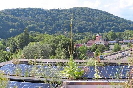 Immer mehr Photovoltaikanlagen auf Marburgs Dächern: Die Stadtgesellschaft baut aus und steigert die gewonnene Leistung aus Sonnenenergie um 13,5 Prozent im Vergleich zum Vorjahr.©Thomas Kopp, Stadt Marburg