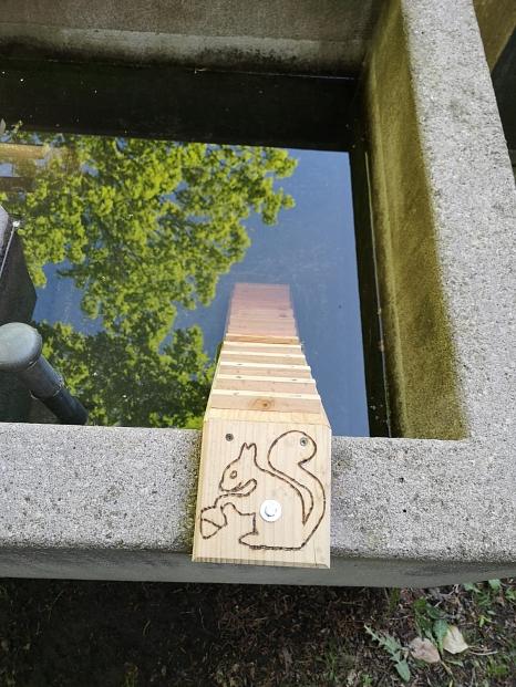 Kleintiertreppe, Friedhof, Wassertreppe, Treppe, Tier, Biene, Hauptfriedhof,©Universitätsstadt Marburg