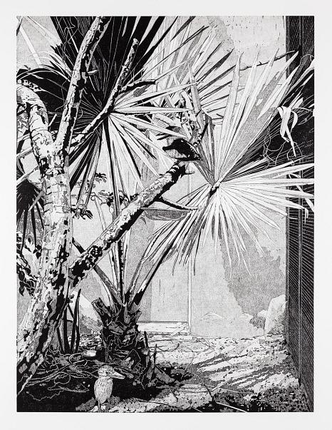 """Abbildung des Werkes """"Kookaburra, Linolschnitt des Künstlers Philipp Hennevogl aus dem Jahr 2018 schwarz-weiß, sehr detailliert erkennbare Palmenbäume in urbanem Raum, unten links ein Vogel©Philipp Hennevogl"""
