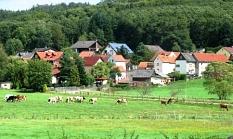 Kühe stehen auf einer Wiese mitten im Dorf Cyriaxweimar©Bernd Weimer