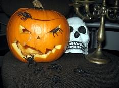Ein zu einer Maske ausgehöhlter Kürbis, aus dessen Mund kleine (Spielzeug-) Spinnen krabbeln. Daneben liegt noch eine weiße Totenkopfmaske, grrrrrr©Universitätsstadt Marburg
