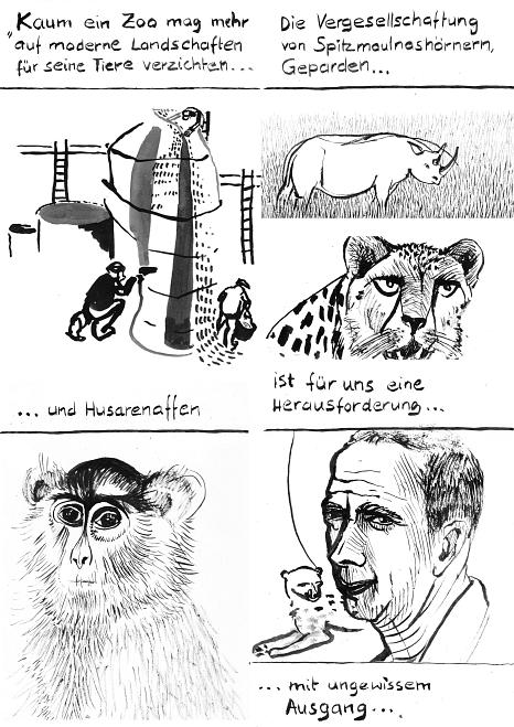 Kunstfelsenbau-im-Zoo©Anna Kölle