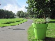 Ansicht Ludwig-Schülerpark mit Blumenansaat und apfelgrünem  Pflanzgefäß