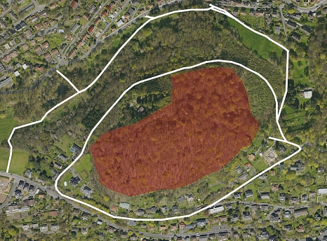 """Luftbild vom Gebiet Schutzgebiet """"Dammelsberg und Köhlersgrund"""". Der Bereich mit erhöhtem Risiko ist rot markiert. Die freigegebenen Wege sind als weiße Linien dargestellt.©Universitätsstadt Marburg"""