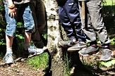 Von einem Baum führen 2 Drahtseil weg, auf denen mehre Füße stehen.©Universitätsstadt Marburg