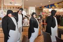 Die Pinguinfamilie des Theaters Pikante war in der Universitätsstraße anzutreffen.