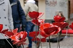 Marburger Frühling 2019: Blumen©Stadtmarketing Marburg e. V.