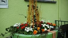 Marburger Frühling 2020 mit Frühlingsblumen in den Farben weiß und orange©Universitätsstadt Marburg FD Stadtgrün