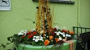 Marburger Frühling 2020 mit Frühlingsblumen in den Farben weiß und orange