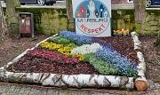 Marburger Frühling 2021 Themenbeet, vielfarbiges Blumenbeet am Steinweg