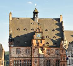 Rathausdach©Georg Kronenberg