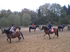 Mehrere Reiterinnen reiten auf einem Reitplatz umher.©Stadt Marburg