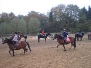 Mehrere Reiterinnen reiten auf einem Reitplatz umher.