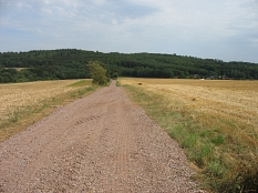 sanierter Feldweg in Cyriaxweimar zwischen Feldern©Bernd Weimer