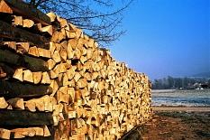Scheitholz ist eine Möglichkeit mit Holz zu heizen©Hesa