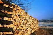 Scheitholz ist eine Möglichkeit mit Holz zu heizen