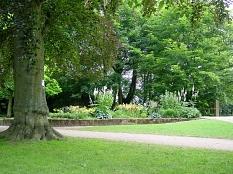 Schloßpark mit Schattenstauden©Fachdienst Stadtgrün