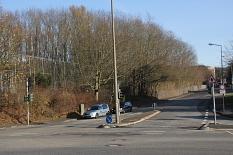 Wo jetzt noch Roteichen stehen, sollen in der Friedrich-Ebert-Straße zur Cappeler Straße Sozialwohnungen entstehen.©Heiko Krause, Stadt Marburg