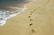 An einem Strandabschnitt sieht man Spuren im Sand.