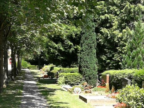 Weg auf dem Hauptfriedhof mit Grabstellen©Universitätsstadt Marburg