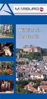 Titelbild des Faltblattes Wildtiere in der Stadt©FD 67
